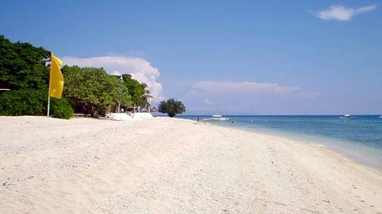 Balicasag Island Dive Resort  Bohol