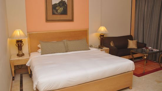 新德里漢斯酒店