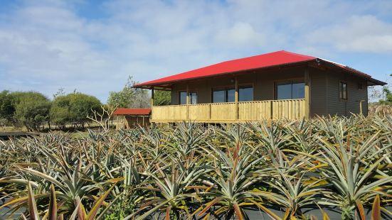 毛嘉洛阿生態小屋旅館