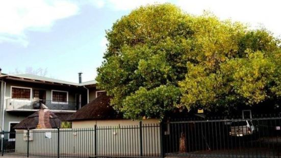 Kloof Lodge Bloemfontein|Kloof Lodge Bloemfontein