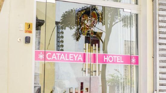 卡塔勒亞酒店