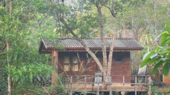 360 熱帶雨林酒店