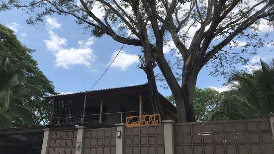 Casa Papito