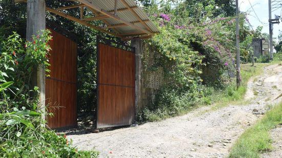 Casa Hospedaje Tingo Maria