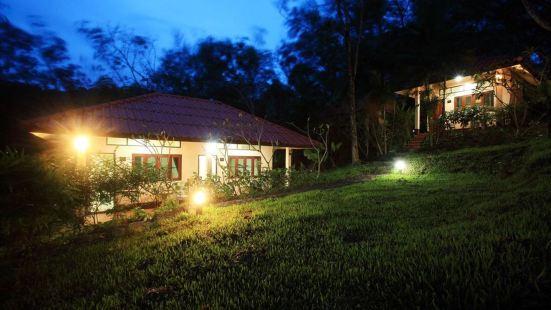 柯木橡膠樹簡易別墅度假村