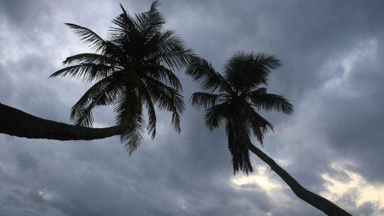 椰子唐卡拉酒店