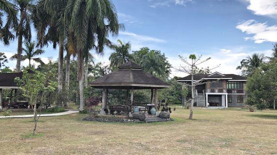 Tree House at Sitio de Amor Leisure Farm Tree House at Sitio de Amor Leisure Farm