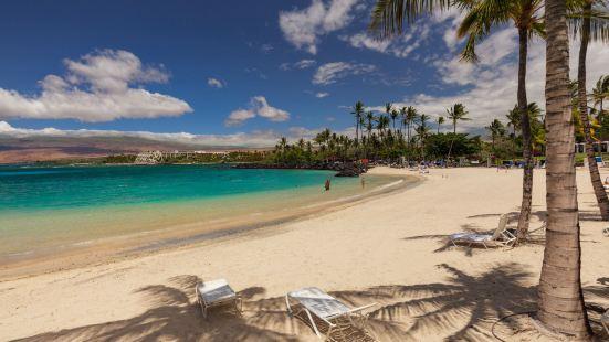 Fairways at Mauna Lani by South Kohala Management