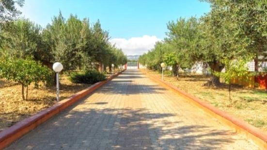 橄欖公園家庭旅館