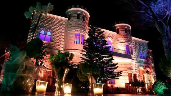 Lemir Faisal Arslan Stay at The Museum