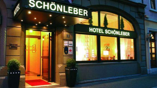 施勒貝城市酒店