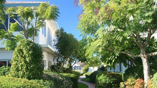 太平洋棕櫚樹度假酒店