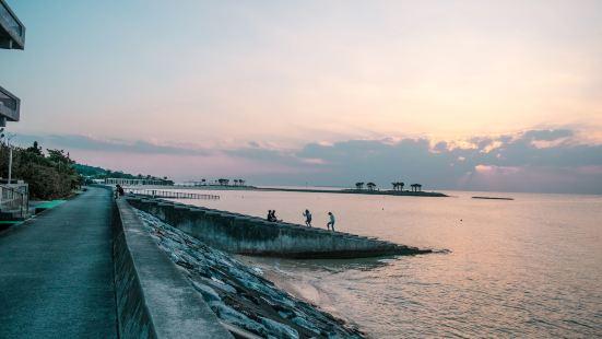 Ocean View Terrace Bise