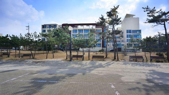 Billow Beach Hotel Jeju