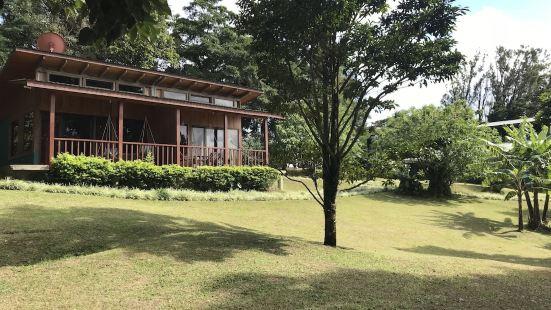 Casa Campo Verde