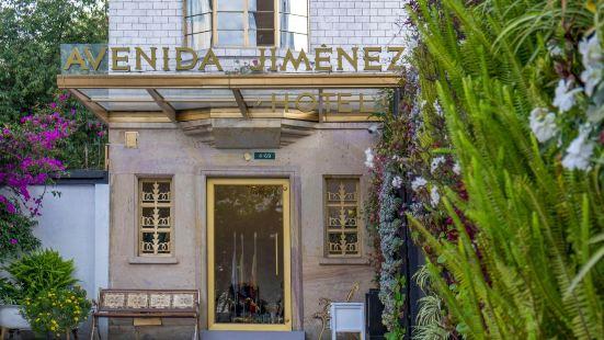 阿文尼達哈門內茲酒店