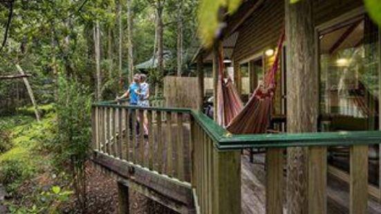 Narrows Escape Rainforest Retreat Sunshine Coast