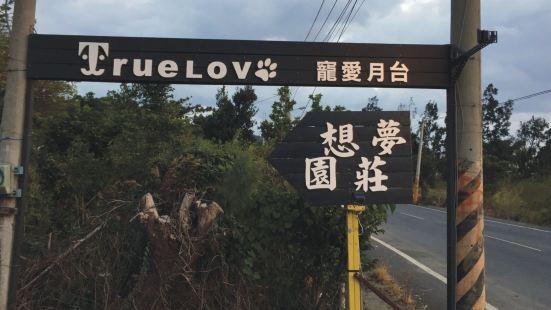 true love Villa