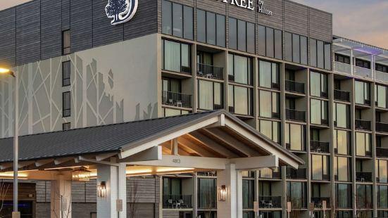 温泉城希爾頓逸林酒店