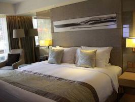 香港帝苑酒店(Royal Garden Hotel)(【促销需致电商家预约】高级房)