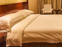维也纳酒店(广州番禺南村店)(高级房+双早+长隆欢乐世界情侣票)