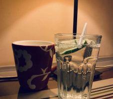 沈阳东方瑞贝庭河景酒店单人饮品一杯