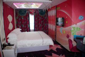 尼航主题酒店(上海浦东机场晨阳路店)主题大床房