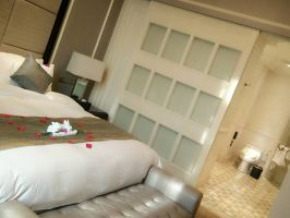 上海金地岚韵酒店(家庭套房)