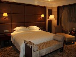 南京阿尔卡迪亚国际酒店(豪华大床)