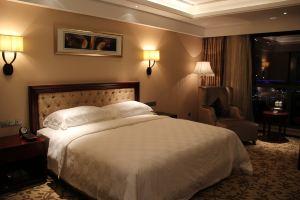 南京阿尔卡迪亚国际酒店(商务大床间)