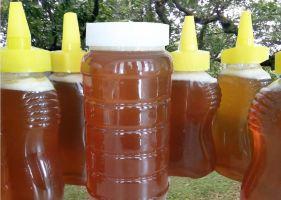【3斤起包邮】国内精选特产店-农家蜂蜜500g1瓶