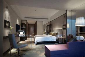 长沙星享尊品酒店【超值专享】高级大床房