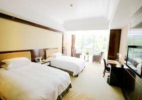 黄山丰大国际大酒店(【提前预约】会宾景观标间)