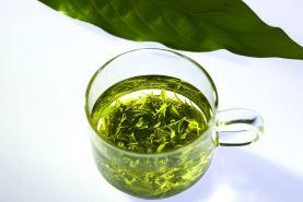 莫干山山里猫居下午茶绿茶