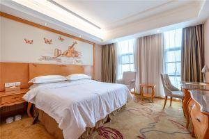 维也纳酒店(武汉墨水湖店)(湖景大床房-4小时)
