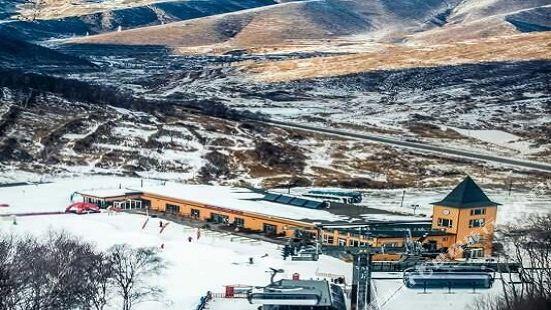 White Birch Hotel