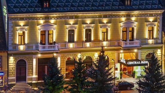 錫吉什瓦拉中央公園酒店