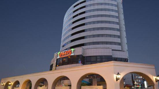 호텔 알프스 오사카