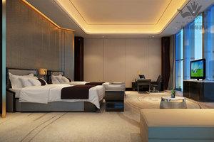 武汉友谊国际酒店(【无早餐】豪华双床房)