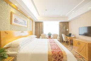 维也纳酒店(广州华南植物园店)豪华单人房-4小时