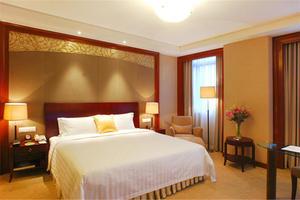 上海新晖大酒店(豪华大床房)