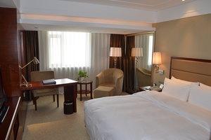 沈阳北约客维景国际大酒店(【含早】高级房)