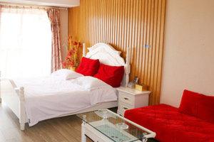 驿家酒店式公寓(南京京隆国际店)欧式豪华大床房