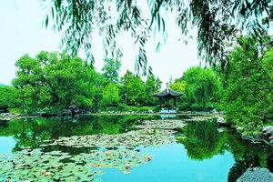 上海出发杭州一日游(畅游西湖+西溪湿地)