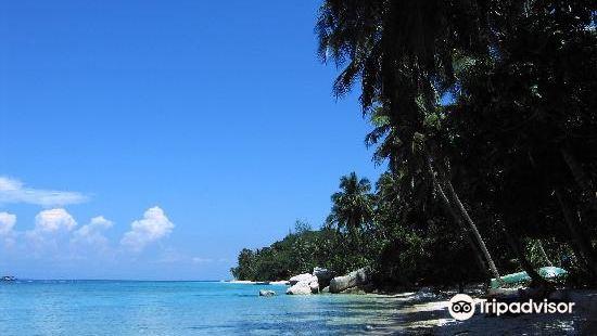D'Coconut Lagoon Lang Island Terengganu
